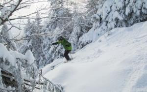 Ski Passes, ages 13-19, 65+