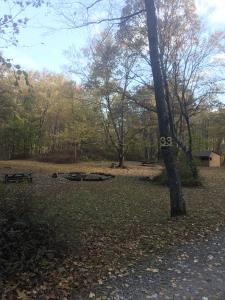 Campsite #33, includes Lean-to